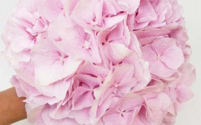 Bouquet Mariée 8