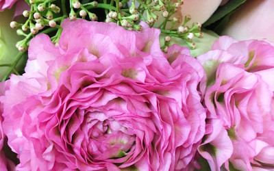 Bouquet 75