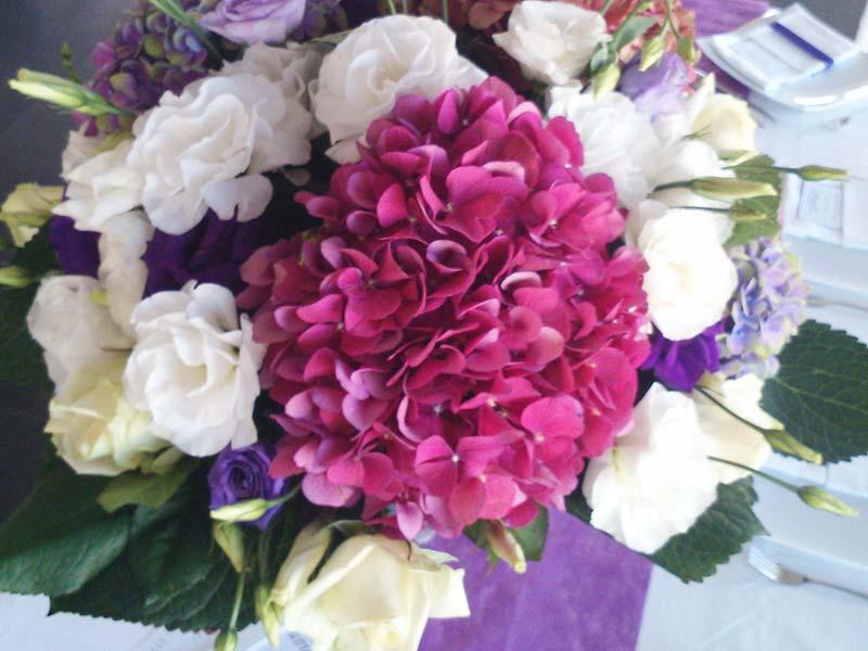 hortensias fushia mariage fleuriste bordeaux. Black Bedroom Furniture Sets. Home Design Ideas