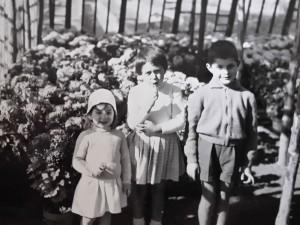 Les premiers petits enfants Reynal