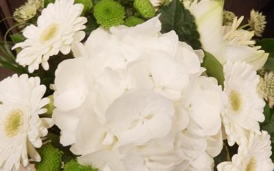 Bouquet 47