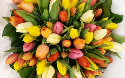 Bouquet 62