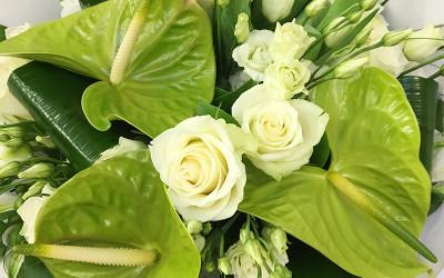 bouquet 71