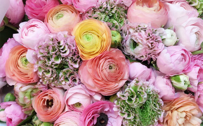 Bouquet 72