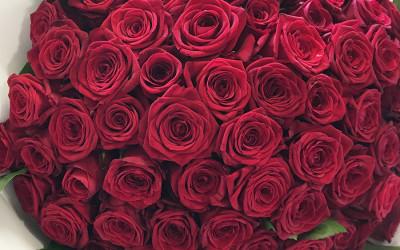 Bouquet 108