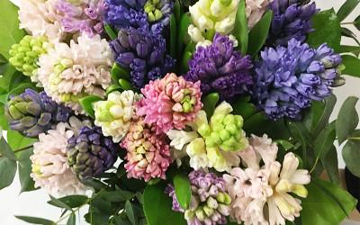 Bouquet 68