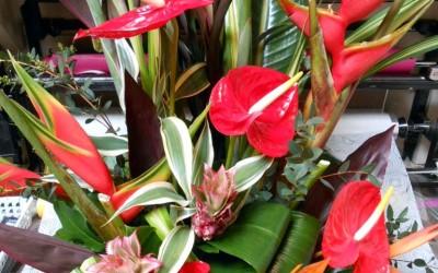 bouquet anturium