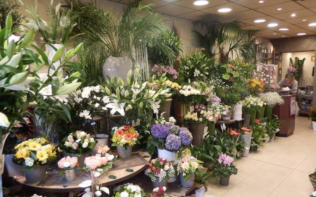 photo-magasin-fleurs