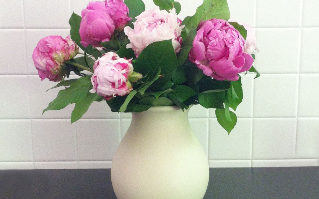 Comment bien prendre soin de son bouquet de fleurs coupées