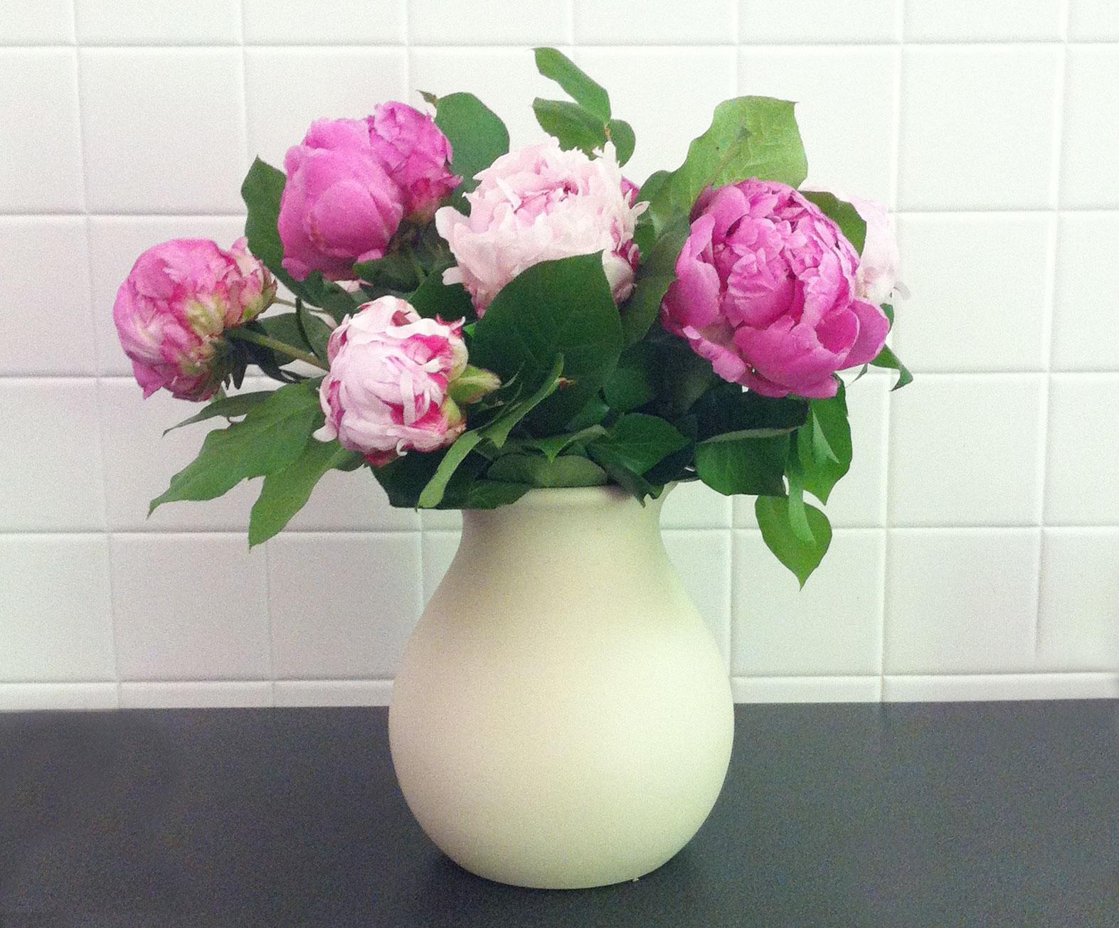 Comment Conserver Du Muguet En Vase comment bien mettre à l'eau son bouquet de fleurs coupées